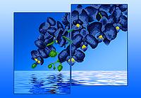 Схема для вышивания бисером Орхидеи голубые (диптих,серия «Элит») АР2-009