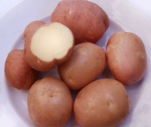 Картофель Беллароза 3кг, фото 1