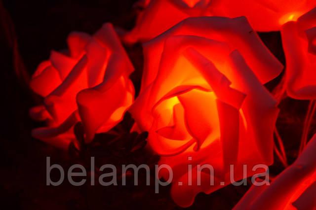 гирлянда от батареек из роз