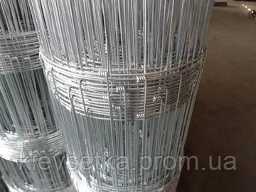 Сетка шарнирная мелкая 1,60м х 50м - фото 1