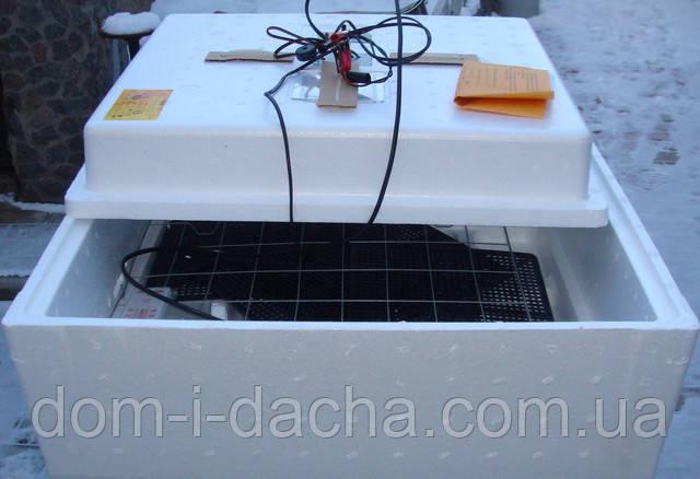 """Инкубатор  """"Несушка""""- 77/220/12В, автомат,с цифровым терморегулятором"""