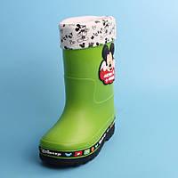 Резиновые сапоги Disney Mickey Mouse Green