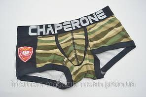 Боксери Chaperone Police