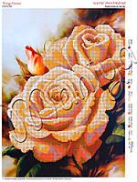 Схема для вышивания бисером Бархатные розы