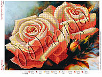 Схема для вышивания бисером Розы