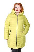 Куртка зимняя размер плюс женская Катрина яблоко