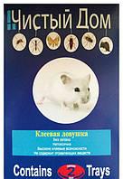 Чистый Дом клеевая ловушка от грызунов и насекомых 28*13.5 см