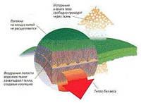 Термобелье из ткани Polartec