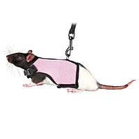 Шлея-жилетка для крыс и морских свинок (эластик) 9-12х12-18см, 1.20 м, цвета в ассортименте