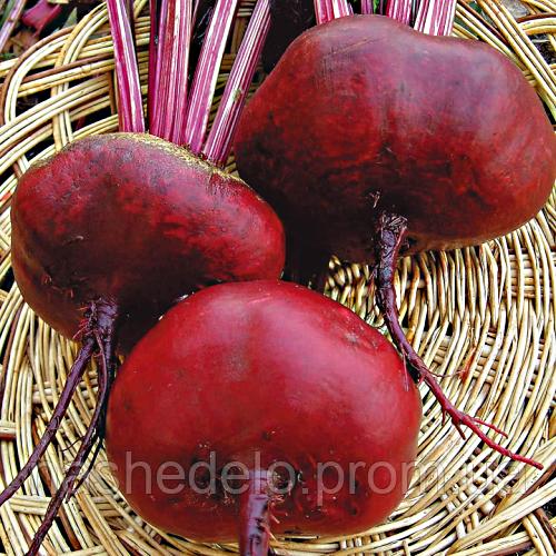 Семена свеклы Египетской инкруст. 20 гр. Цезарь