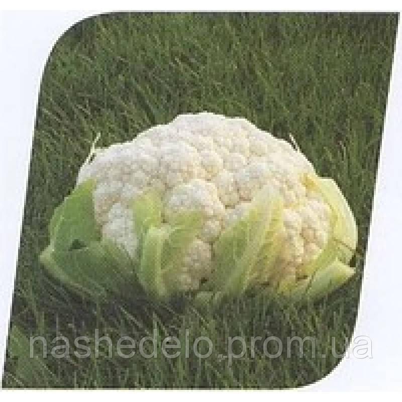 Семена цветной капусты Кердос F1 1000 сем Seminis