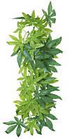 """Растение для террариума, """"Abutilon"""", 20х30см., шелк."""