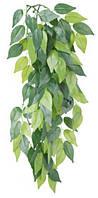 """Растение для террариума, """"Ficus"""", 20х30см., шелк."""
