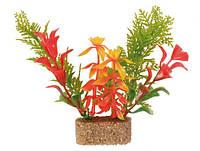 Растения для аквариума 30 см, 6 шт.
