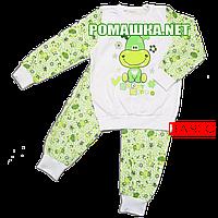 Детская байковая пижама с начесом р. 98 ткань ФУТЕР 100% хлопок ТМ Виктория 3244 Зеленый