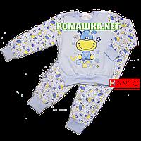 Детская байковая пижама с начесом р. 104 ткань ФУТЕР 100% хлопок ТМ Виктория 3244 Голубой