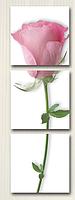 "DZ 014 ТРИПТИХ  ""Одинокая роза""  150х50см"