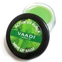 "Бальзам для губ ""Мята"" Vaadi Herbals, 6г"