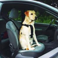 Шлея Pet Pro в авто для собак 75*90 см