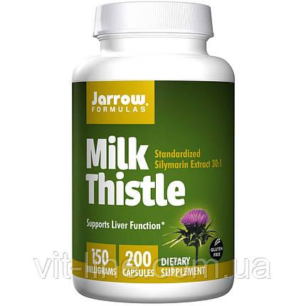 Jarrow Formulas, Молочный чертополох, 150 мг, 200 капсул, фото 2