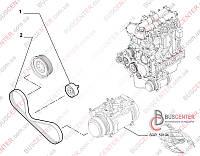Ремень ручейковый 4 PK 1102 (привод компрессора кондиционера) Fiat Ducato 250 (2006-……) 504048243 CONTITECH 4 PK 1102 ELAST