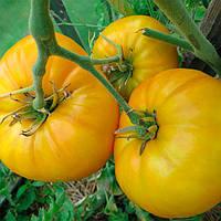 Микадо Желтый семена томата индет. Элитный ряд 1 г