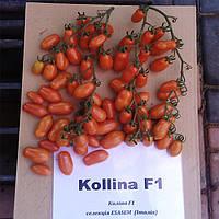 Колина F1 (Collina F1) семена томата индет. мини-сливки Esasem 250 семян