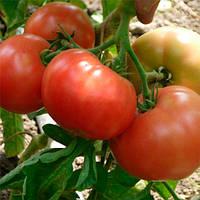 Инфинити F1 семена томата полудет. Элитный Ряд 1 г