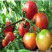 Ляна розовая семена томата дет розового Элитный Ряд 1 г