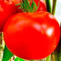 Есения F1 семена томата Элитный Ряд 1 г