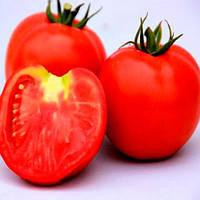 ЛС (LS) 1137 F1 семена томата дет. Lucky Seed 1 000 семян