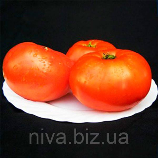 Мирсини F1 (Mirsini F1) семена томата Seminis 1 000 семян