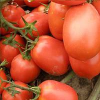 Семарол семена томата Semo 10 000 семян