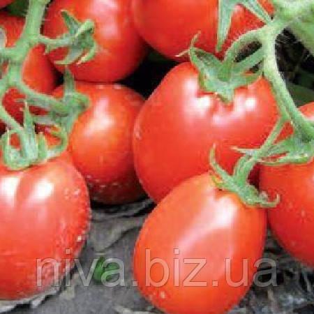 Рио гранде семена томата дет. Lark Seeds 500 г