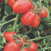 8504 F1 семена томата дет. Heinz/Lark Seeds 5 000 семян