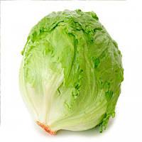 Айсберг Гранди семена салата тип Euroseed 50 г
