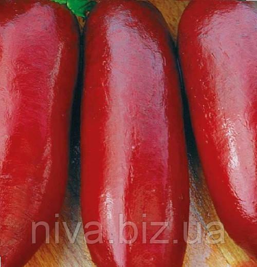 Ренова насіння буряка столового циліндричного пізнього 125-130 днів Moravoseed 1 000 г