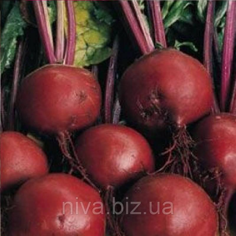 Бонел насіння буряка столового округлого середньораннього 110-115 днів Hazera 1 000 г