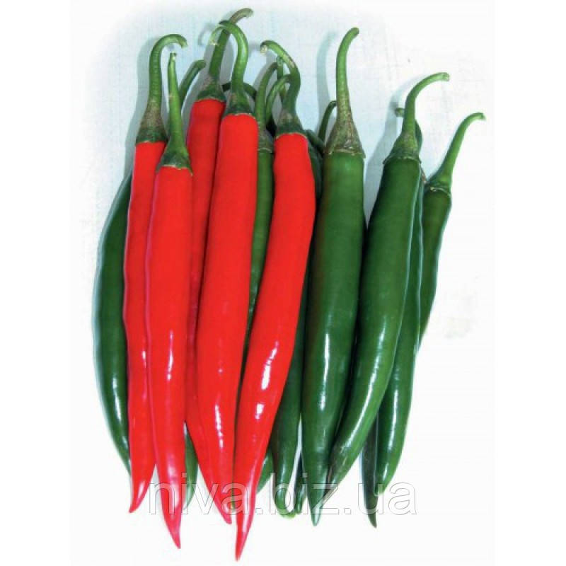 Биг Дедди F1 семена перца острого NongWoo Bio 500 семян