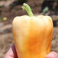 Соломия F1 семена перца сладкого Элитный Ряд 1 г