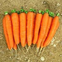 Романс F1 семена моркови Нантской прайм 1,6-1,8 мм Nunhems 100 000 семян
