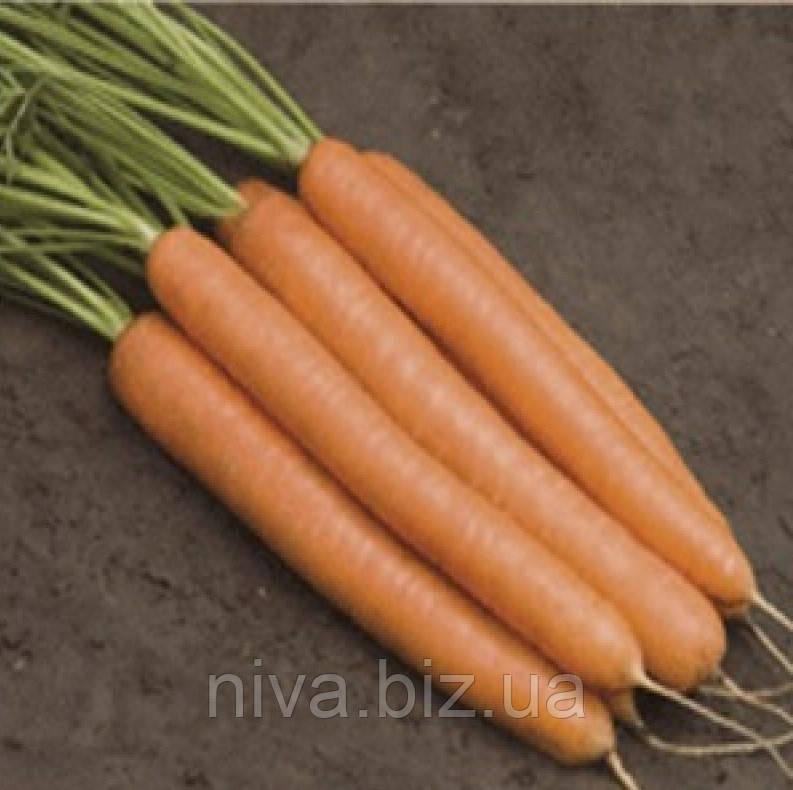 Дарина семена моркови берликум Mоravossed 1 000 г