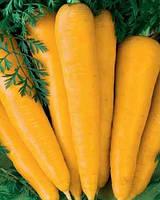 Лоберишер семена моркови Флакке желтой Hortus 100 г