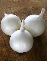 Толука F1 (Toluca F1) насіння цибулі білої Seminis 250 000 насінин