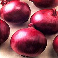Ред Лаки F1 семена лука репчатого красного Lark Seeds 100 000 семян
