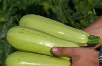 Немо F1 семена кабачка Lark Seeds 500 г