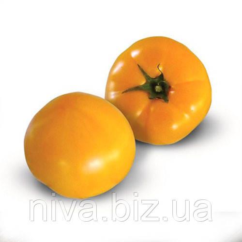 КС (KS) 10 F1 семена томата индет. оранжевого Kitano Seeds 100 семян