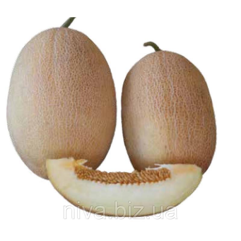 Дакаро F1 насіння дині типу Ананас Enza Zaden 500 насінин