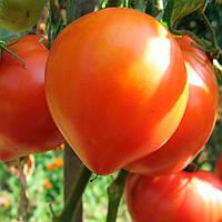 Абаканский розовый семена томата индет. Элитный ряд 5 г