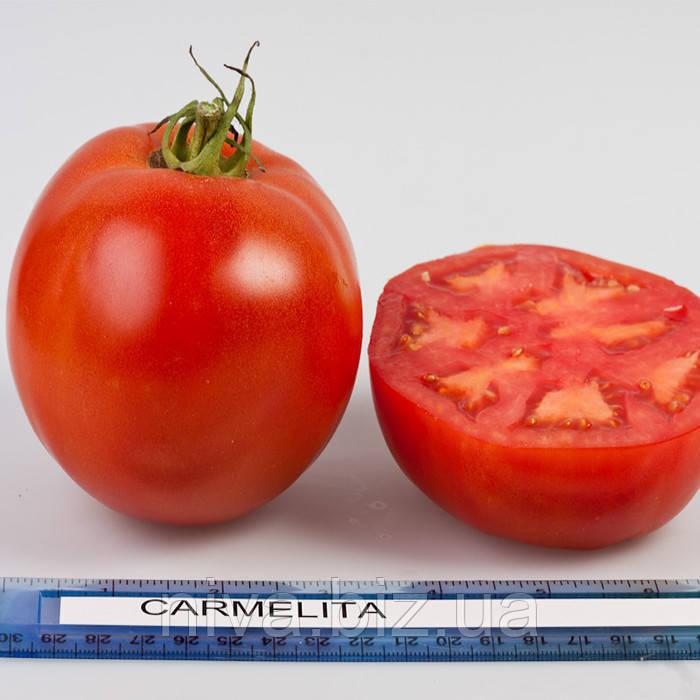 Кармелита F1 семена томата индет. Элитный Ряд 5 г